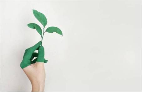a woman with green fingers holding a green plant