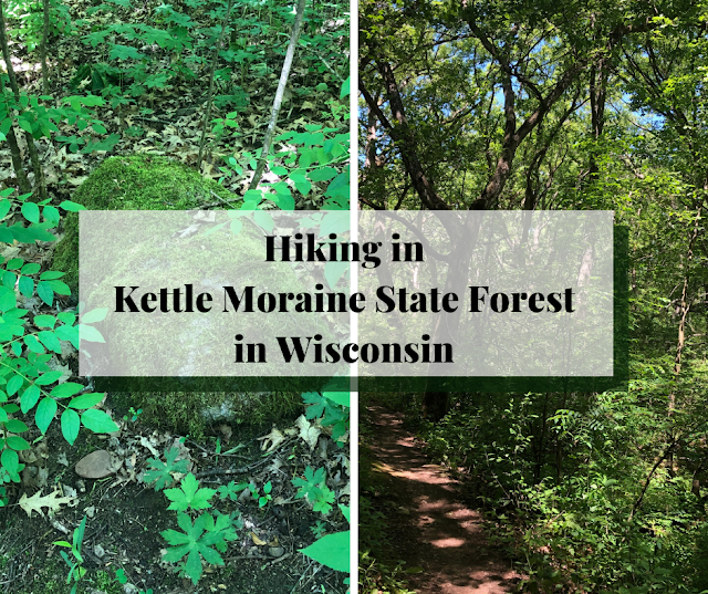 Hiking Through Splendor at Kettle Moraine State Forest Southern Unit in Wisconsin