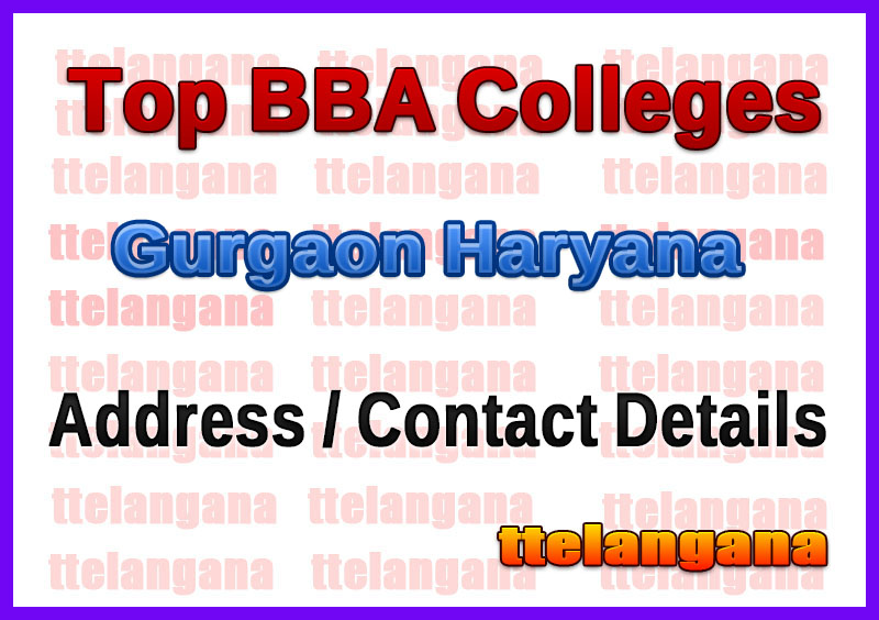 Top BBA Colleges in Gurgaon Haryana