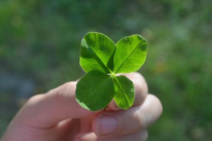 Как привлечь удачу и деньги в начале месяца: ритуалы на 1 ноября 2019 года