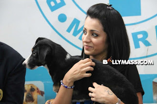 0008 WWW.BOLLYM.COM Actress Trisha At Blue Cross Building Launch Stills Image Picture Pics Gallery Wallpaper Poster.jpg