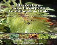 briófitas-de-los-bosques-templados-de-Chile