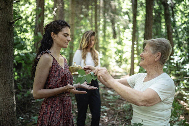 forest bathing benefici terapia significato