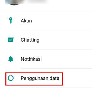 Whatsapp Penggunaan data