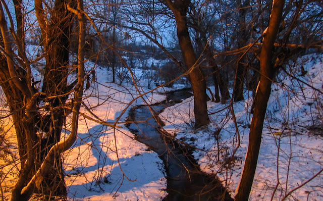 Зима Дубоссары