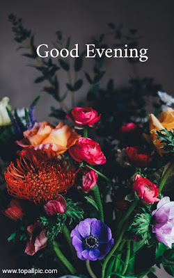 wishes good evening images with rose flowers for whatsapp