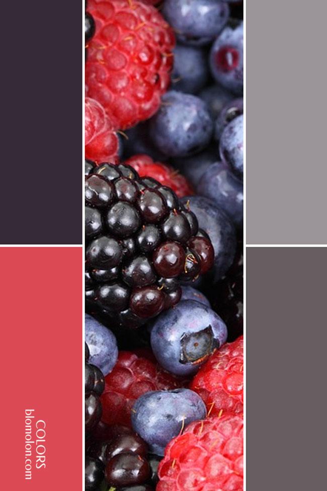 variedad_en_color_combinacion_4