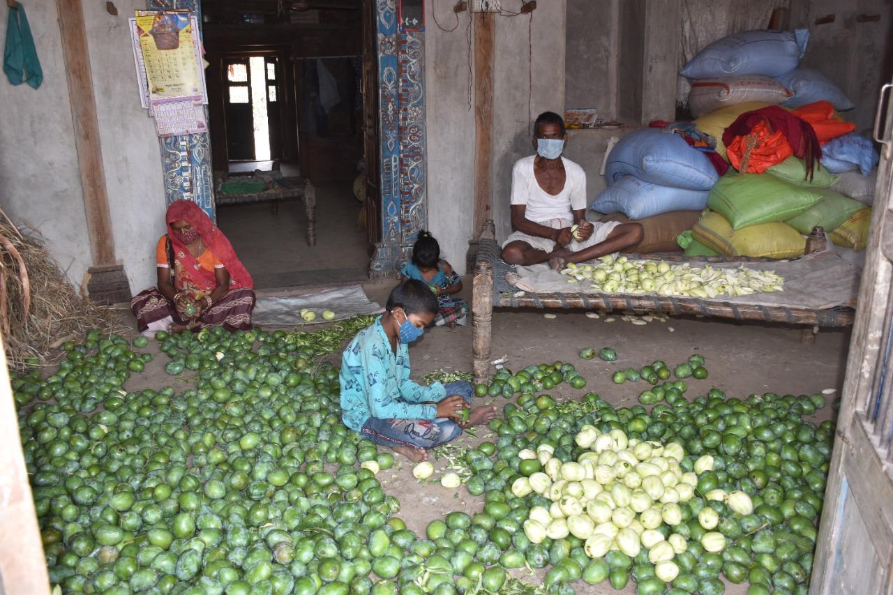Raw Mango Product Making