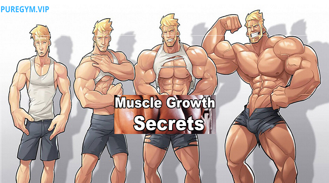 Muscle-Growth-Secrets-Basic-Tips!