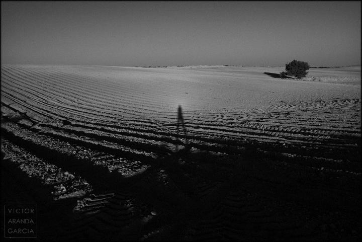 fotografia,sombra,autorretrato,paisaje,el_escobar,cultivo,campo