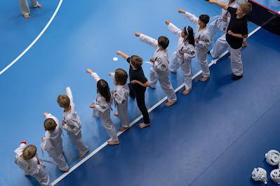Ungdomar på rad som tränar kampsport, sedda ovanifrån.
