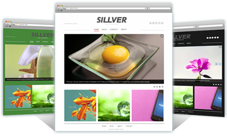 Sillver WordPress Theme
