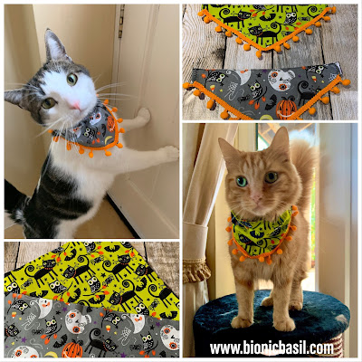 Melvyn and Fudge Modelling The Mini Pumpkin Bandannas -Mandalas on Monday ©BionicBasil® Colouring With Cats #91