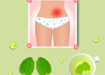 Receita Contra Cólica Menstrual: Chá de Hortelã Comum