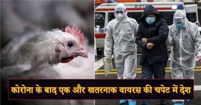 कोरोना के बाद एक और खतरनाक वायरस की चपेट में देश , चिकन से फैल रहा एक और खतरनाक वायरम , साढ़े चार हजार मौतों , मचा हाहाकार