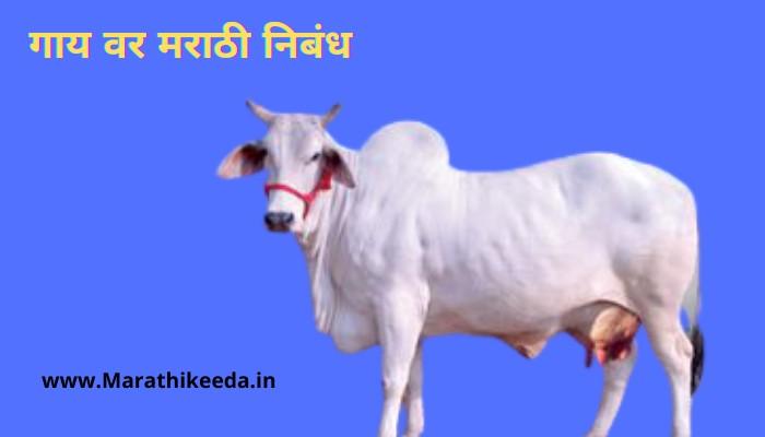 Essay On Cow In Marathi