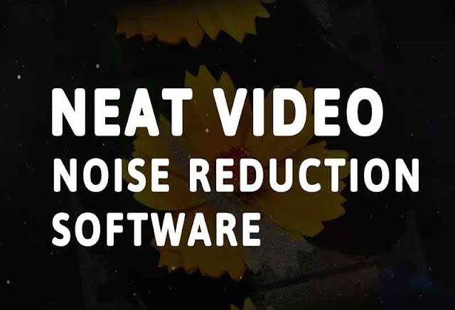 Neat video v5 Version for Premiere Pro