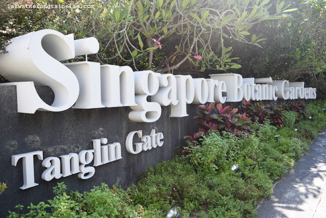 WHY THE SINGAPORE BOTANIC GARDENS IS A UNESCO WORLD HERITAGE SITE?