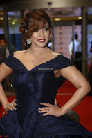 Payal Ghosh aka Harika in Dark Blue Deep Neck Sleeveless Gown at 64th Jio Filmfare Awards South 2017 ~  Exclusive 077.JPG