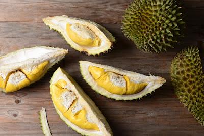 bibit durian super