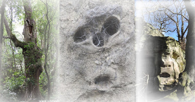 Is it just me? Faces in rocks & trees......