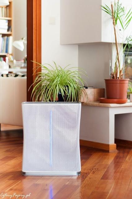 Jak-wybrac-oczyszczacz-powietrza-dla-alergika