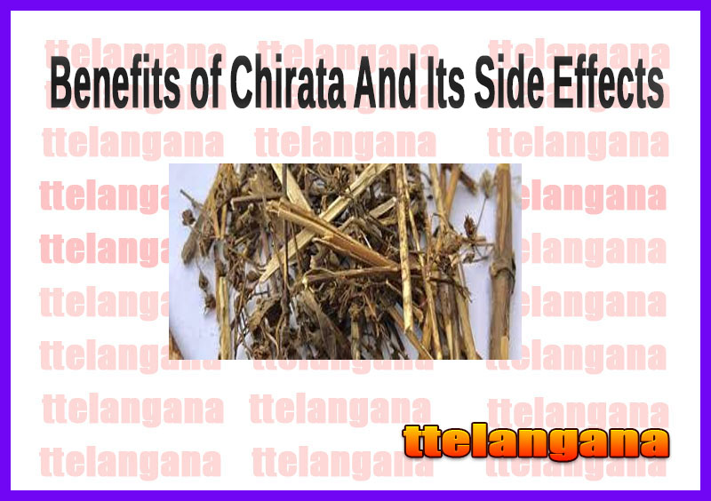 Benefits of Chirata (Swertia Chirata) And Its Side Effects