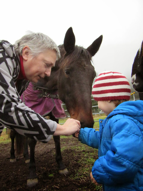 In which good horses do the things we tell them to do, (in ...
