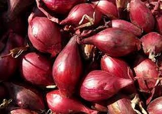 jual bawang merah nganjuk, pembeli bawang merah, bisnis bawang merah brebes, pengepul bawang merah di jatim, distributor bawang merah impor, alamat petani bawang merah brebes, jual bawang merah brebes murah, grosir bawang putih