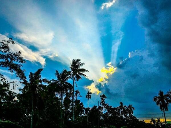 Does sunlight kill the coronavirus?
