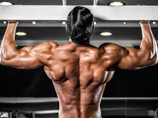 Top 5 Exercises For Building Wide Muscular Back