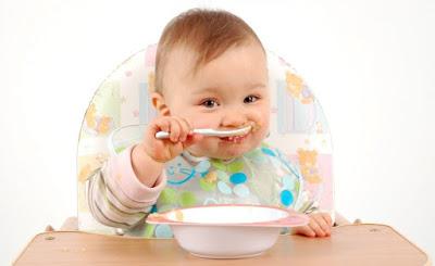 Makanan untuk bayi 1 tahun