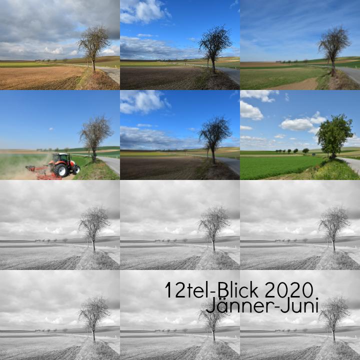 12tel-Blick Jänner bis Juni