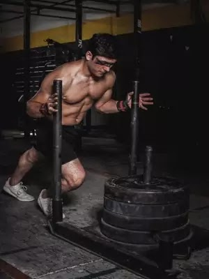 How Many Exercises Per Workout Session For Maximum Muscle Growth