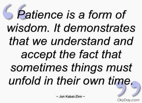 Leading Motivated Learners: Patience: A Principal's Pal