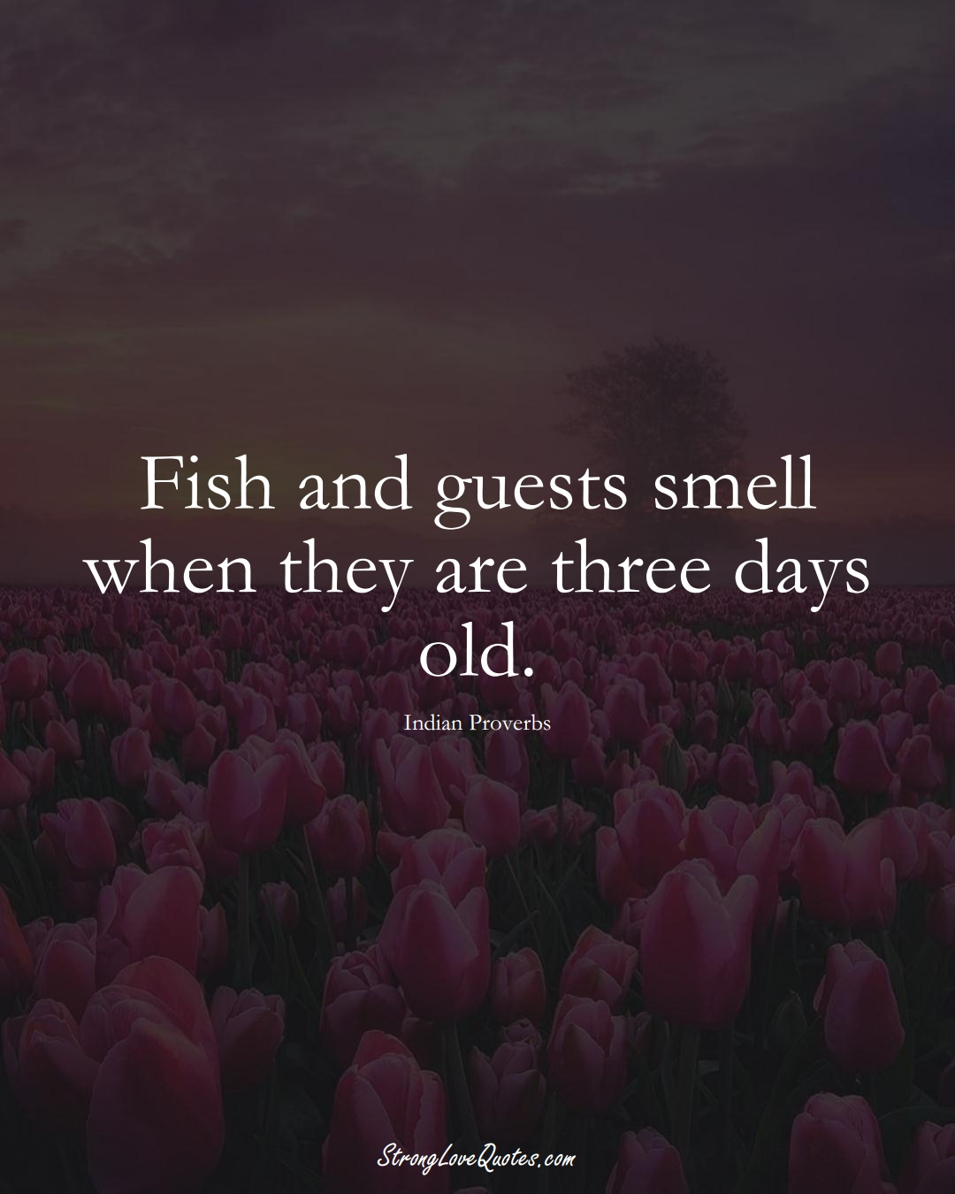 Fish and guests smell when they are three days old. (Indian Sayings);  #AsianSayings