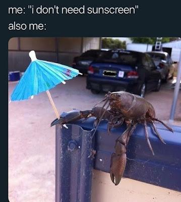 Hot Summer Meme