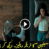 Pakistani New Movie Jalaibee Official Trailer