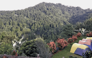 Camping Ground eagle hill puncak