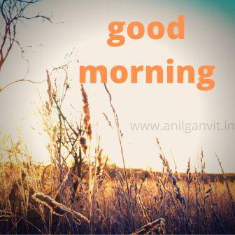 Good Morning Shayari in Hindi2