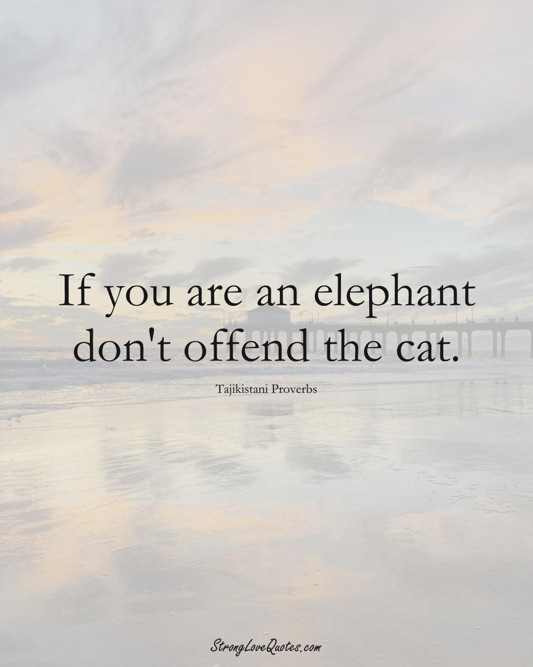 If you are an elephant don't offend the cat. (Tajikistani Sayings);  #AsianSayings