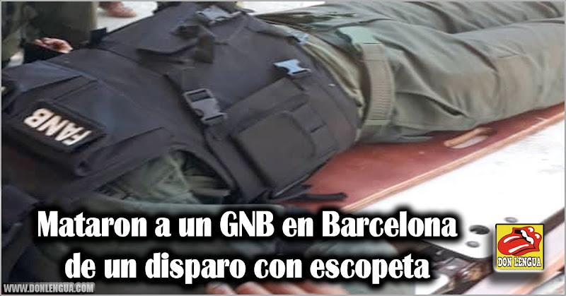 Mataron a un GNB en Barcelona de un disparo con escopeta