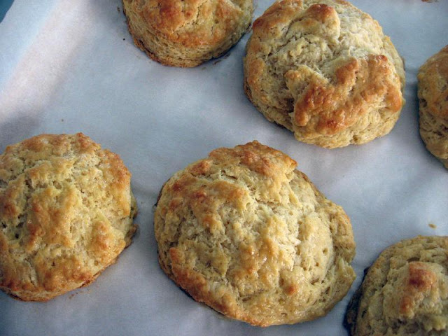 Flaky Buttermilk Biscuits by freshfromthe.com