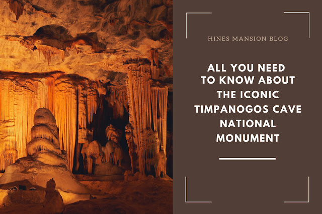 Everything you need to know about the iconic Timpanogos Cave National Monument blog cover image