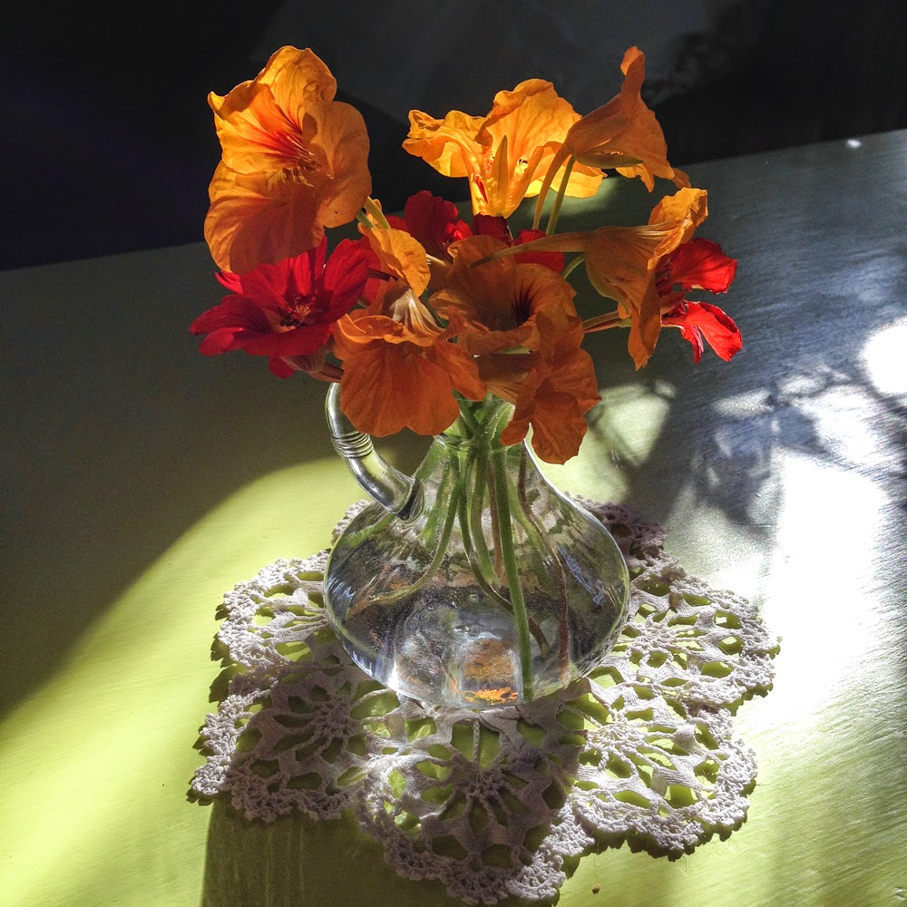 nasturtiums in a glass vase on a doily in the sun