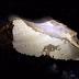 Meteoritos raros generan campo magnético tan fuerte como el de la Tierra