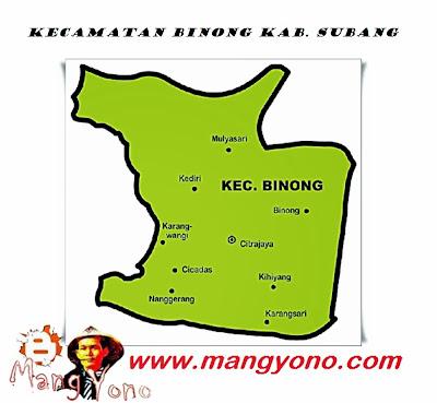 Kecamatan Binong, Kabupaten Subang