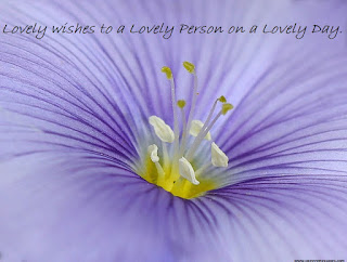 lovely wishes to a lovely person on a lovely day