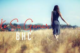 Lirik Lagu BHC | Ko Sa Gemar