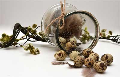 beberapa butir telur dan bulu burung puyuh, bekas toples kaca berbentuk unik, tali rami atau serat goni, dan setangkai tanaman merambat